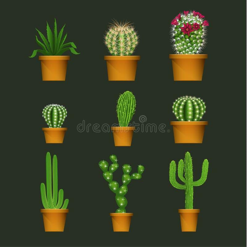 O cacto diferente datilografa dentro a potenciômetro de flor os ícones realísticos do vetor ajustados ilustração stock