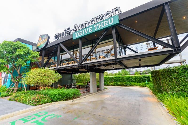 O café das Amazonas conduz primeiramente através do ramo em Tailândia imagem de stock royalty free