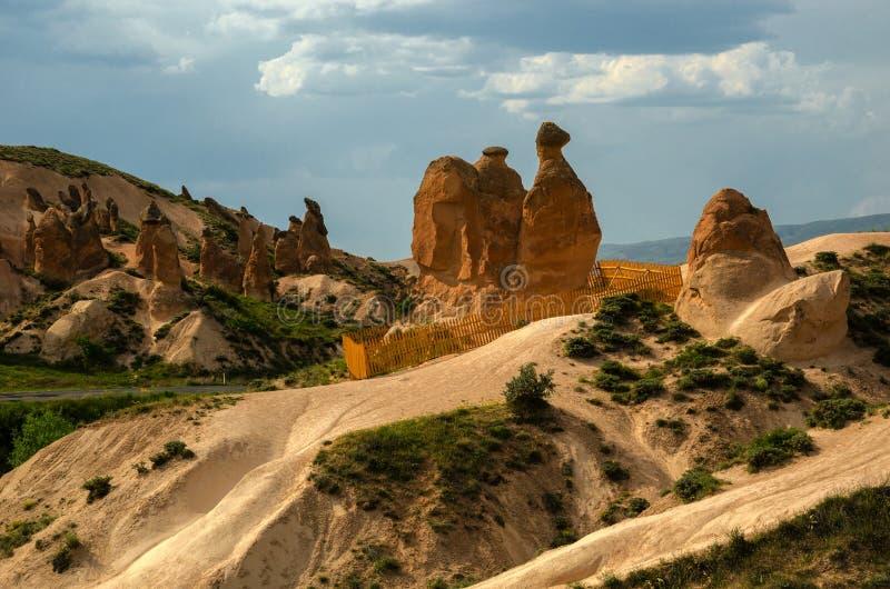 O camelo, Cappadocia fotografia de stock