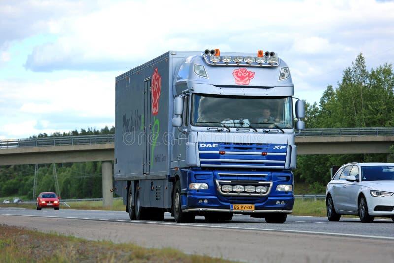 O caminhão da flor do DAF XF move-se ao longo da estrada entre o tráfego fotografia de stock royalty free