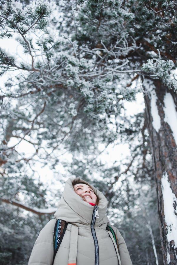 O caminhante da jovem mulher que olha acima ao pinho ramifica na neve coberta floresta do inverno foto de stock royalty free