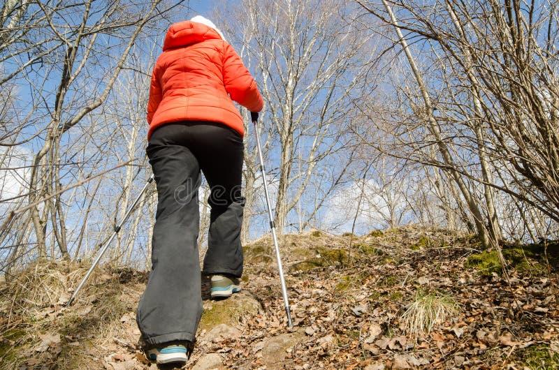 O caminhante da mulher com varas escandinavas anda no por do sol imagem de stock