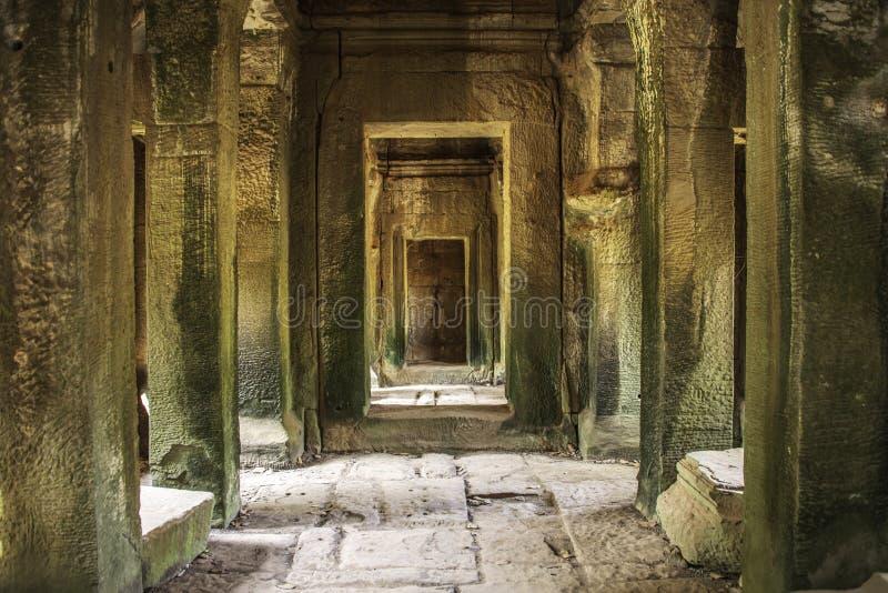 O caminho escondido de Angkor Wat fotografia de stock