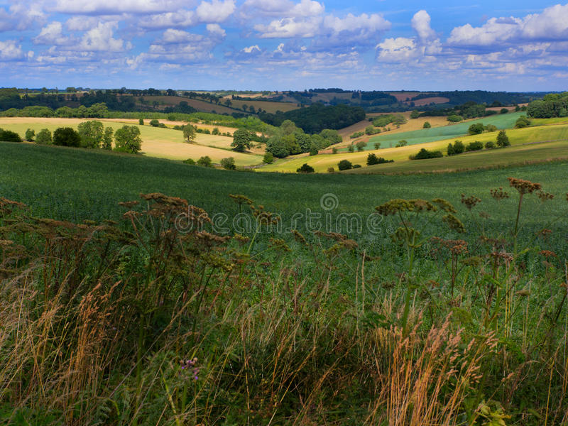 O campo inglês bonito como visto no Cotswolds imagens de stock