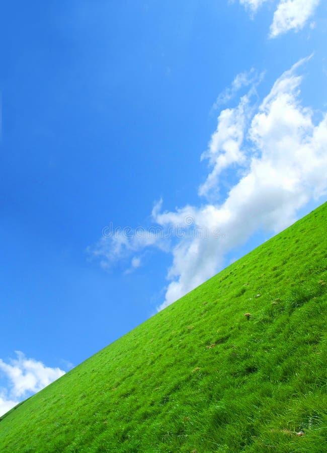 O campo verde fotos de stock