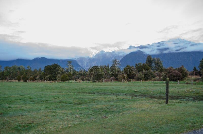 O campo verde bonito no inverno com um Mountain View na ilha sul, Nova Zelândia imagem de stock