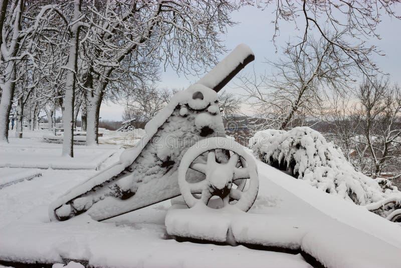 O canhão e as árvores velhos cobriram a neve após a tempestade do inverno imagem de stock