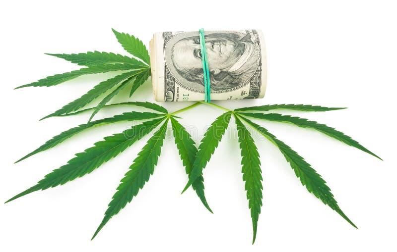 O cannabis e o dinheiro foto de stock royalty free