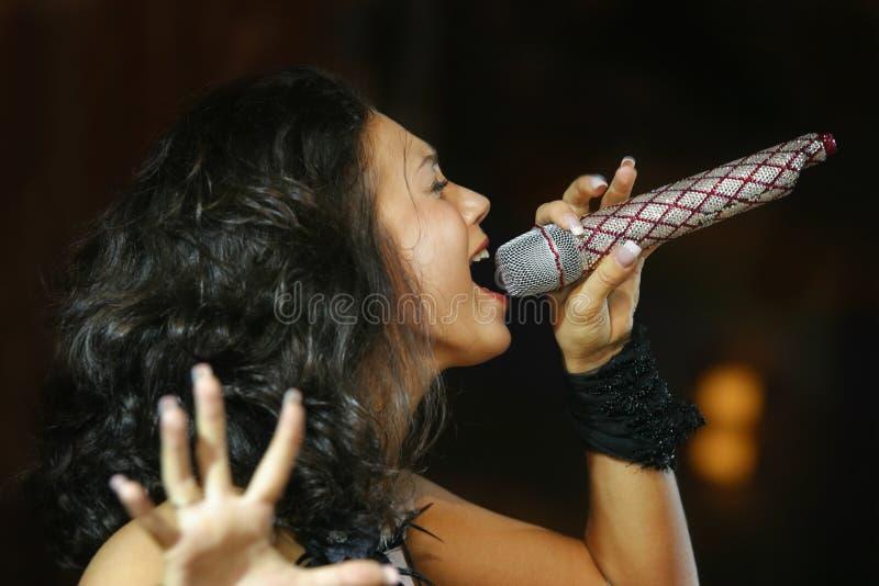 O cantor com um microfone fotos de stock royalty free