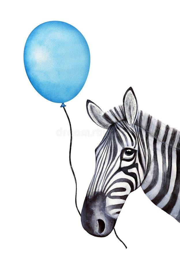 O caráter engraçado da zebra guarda uma corda com um balão azul do feriado na boca imagens de stock royalty free