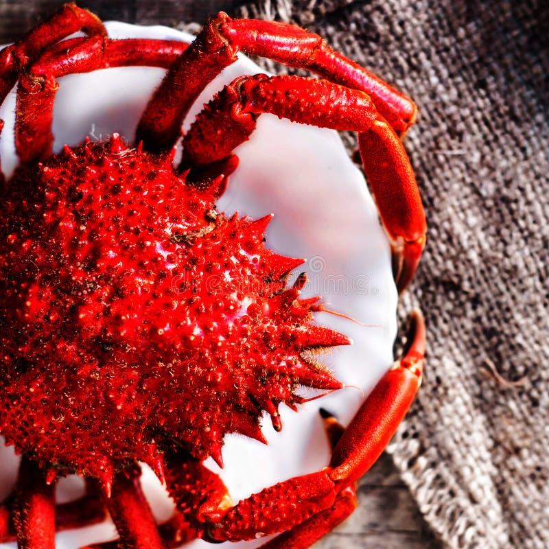 O caranguejo vermelho/cozinhou o caranguejo no fundo de madeira Marisco delicioso imagem de stock royalty free
