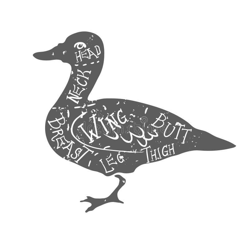 O carniceiro tipográfico do pato do vintage corta o vetor do diagrama ilustração do vetor