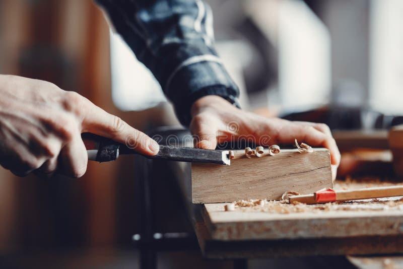 O carpinteiro trabalha com uma ?rvore imagens de stock