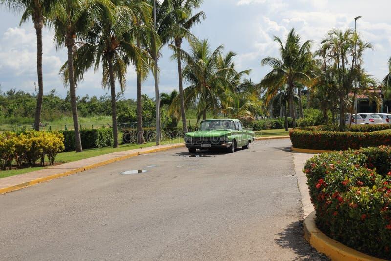 O carro americano do vintage verde monta ao longo de uma fileira de palmeiras altas imagens de stock royalty free