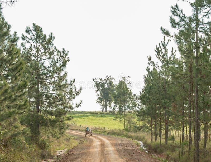 O carro e a estrada de terra foto de stock
