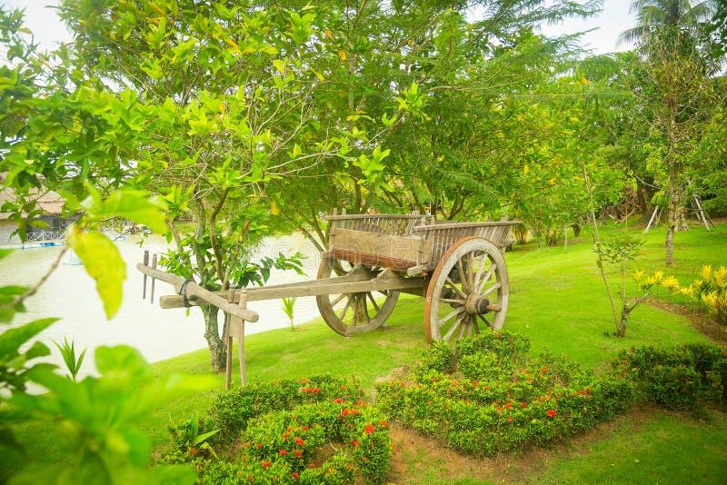 O carro em um parque verde imagens de stock royalty free