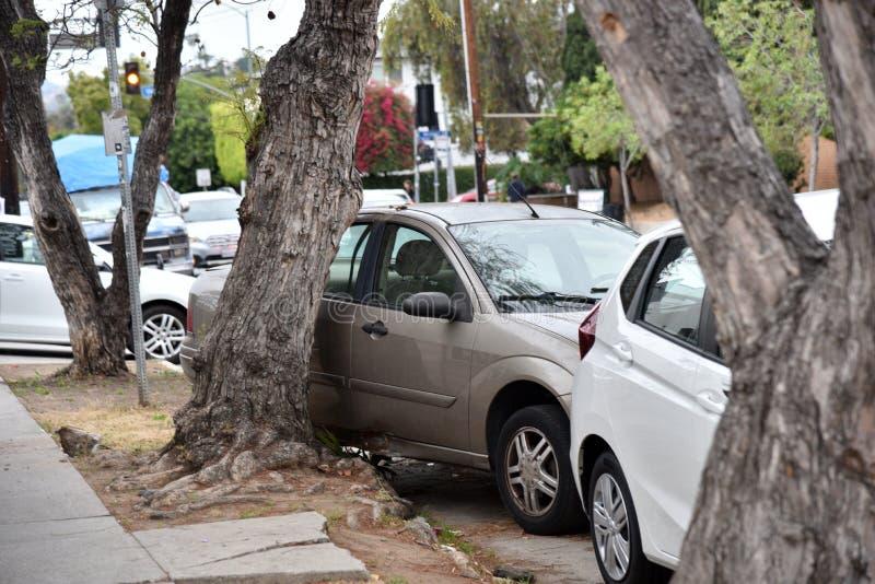 O carro introduziu na ?rvore ap?s o acidente imagens de stock royalty free