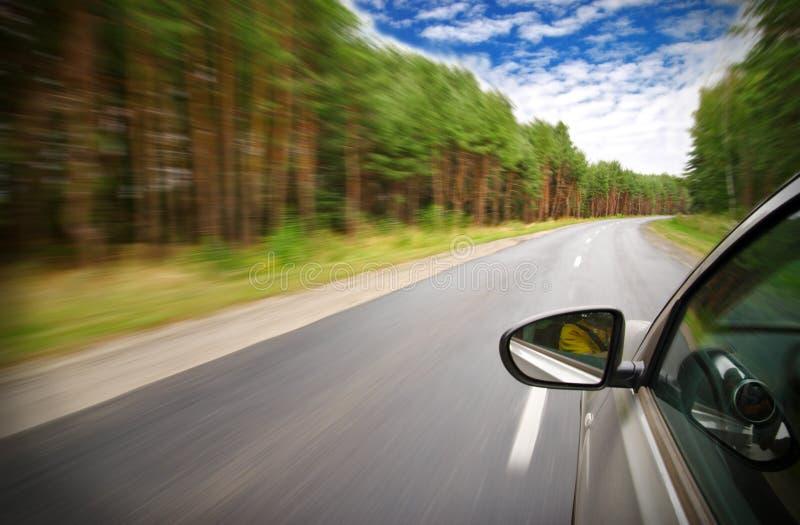 O carro move-se na velocidade rápida na floresta imagens de stock royalty free