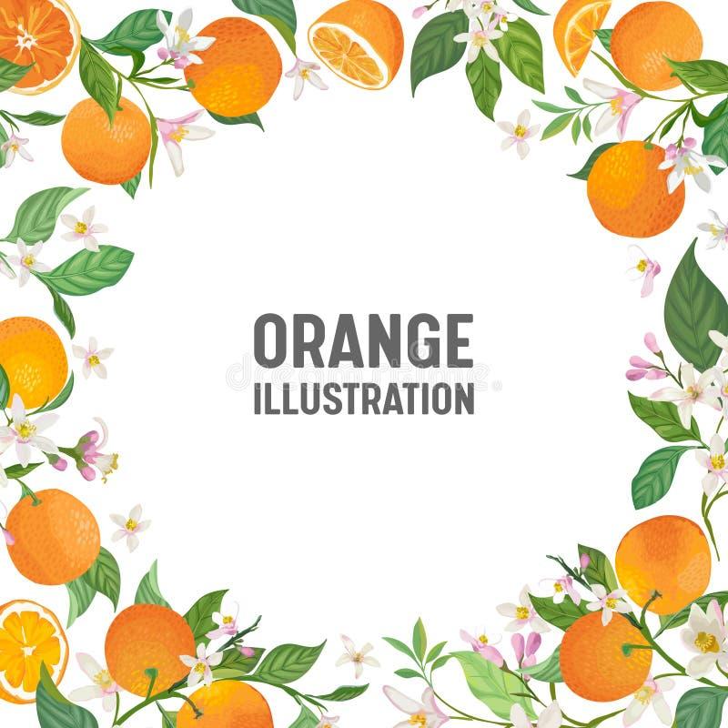 O cartão botânico do convite do casamento, vintage salvar a data, o projeto do quadro do molde da laranja, os citrinos, as flores ilustração do vetor