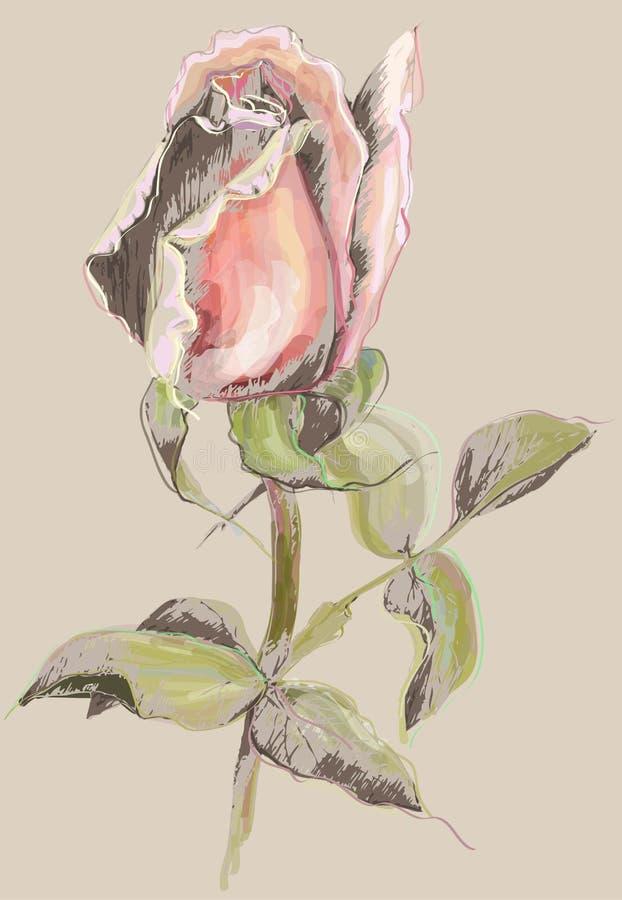 O cartão com levantou-se Rosas da ilustração Decorati bonito ilustração stock