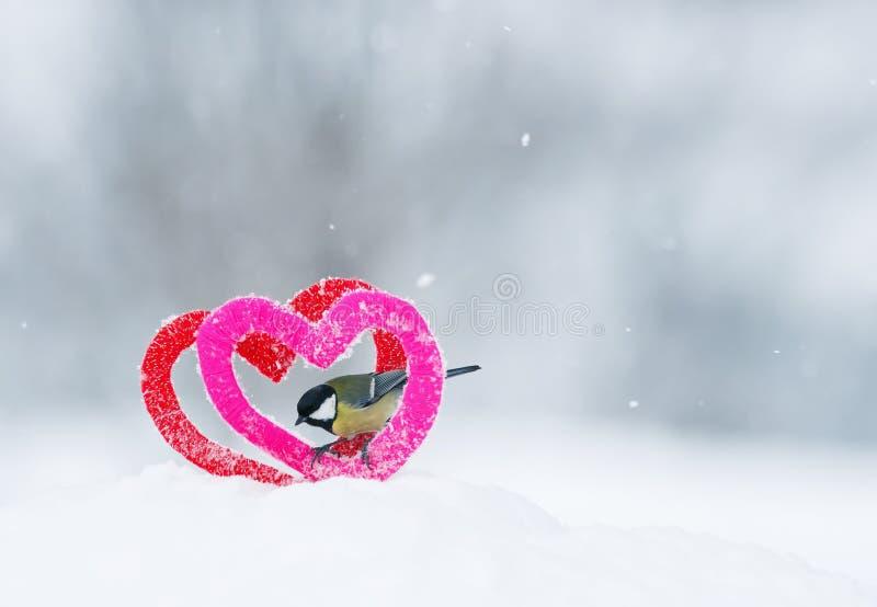O cartão do dia de Valentim com o pássaro está no quadro de dois fez malha elementos que decorativos os corações estão na neve no fotografia de stock royalty free