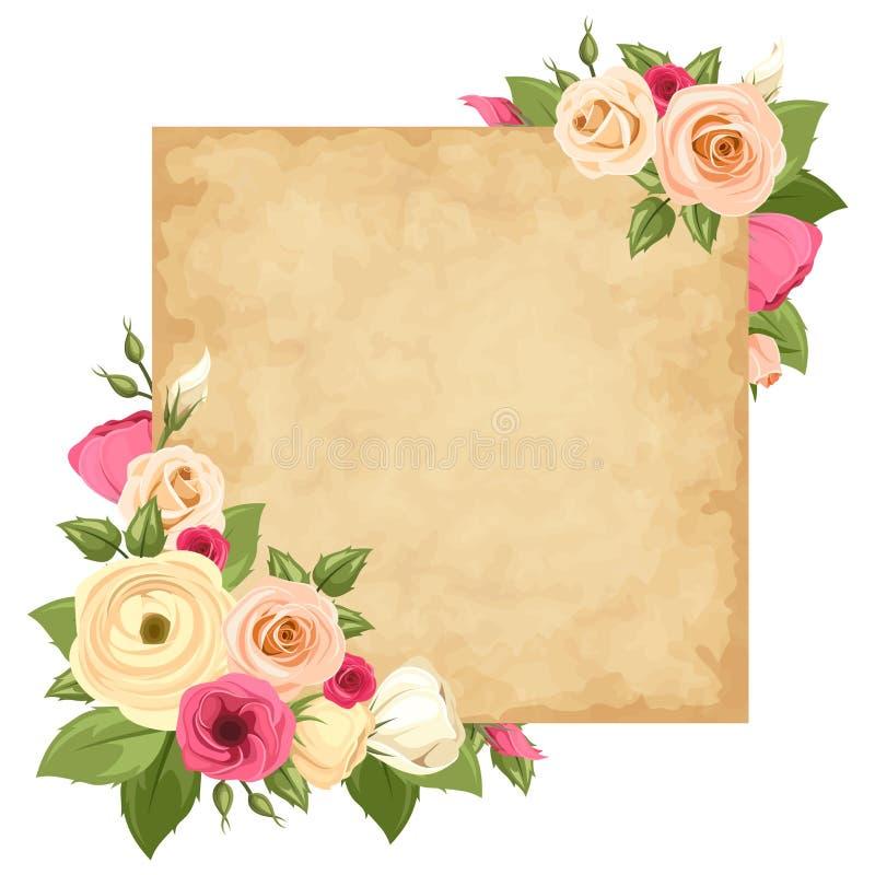 O cartão do pergaminho com as rosas, lisianthuses e o ranúnculo cor-de-rosa e alaranjados floresce Vetor EPS-10 ilustração do vetor