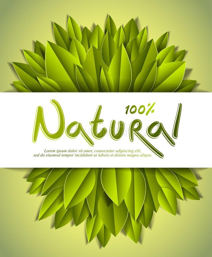 o cartão natural com as folhas verdes frescas, bandeira de 100 por cento da propaganda, projeto do vetor fez no estilo realístico ilustração royalty free