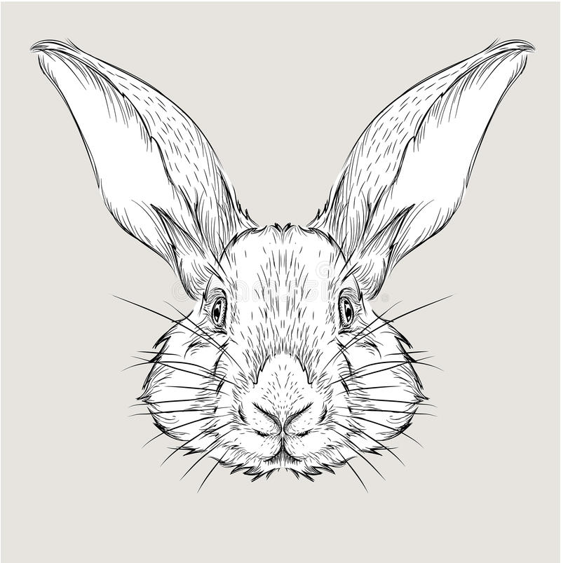 O cartaz com o retrato do coelho da imagem Ilustração do vetor da tração da mão ilustração stock