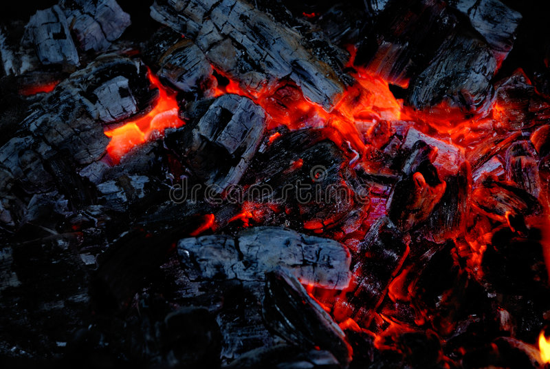 O carvão de madeira queima-se no incêndio imagem de stock royalty free
