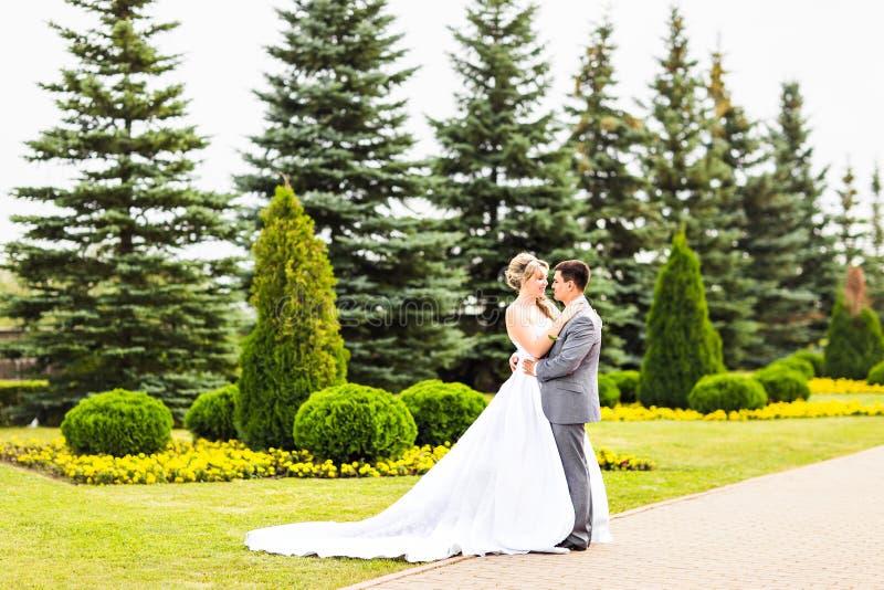 O casamento bonito, o marido e a esposa, amantes equipam a mulher, noivos foto de stock royalty free
