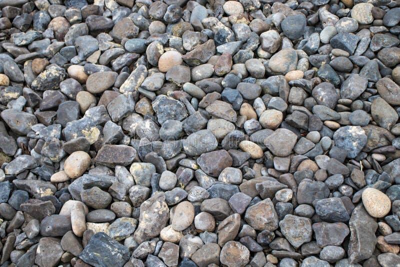 O cascalho do seixo apedreja a natureza redonda do fundo à terra da textura da rocha do papel de parede da praia imagens de stock