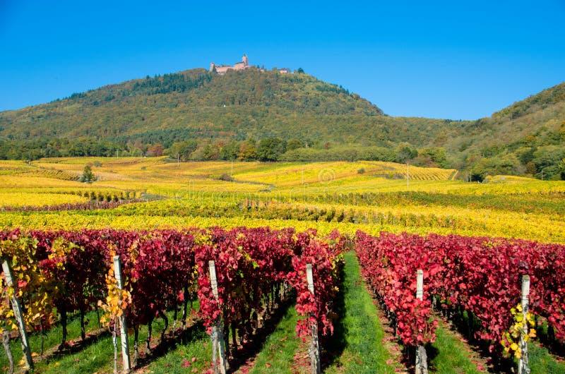 O castelo de Koenigsbourg em Alsácia imagem de stock royalty free