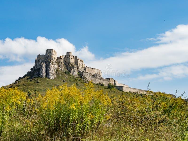 O castelo de Spis - UNESCO cultural nacional do monumento do hrad de Spissky - castelo de Spis - um do castelo o maior na Europa  foto de stock
