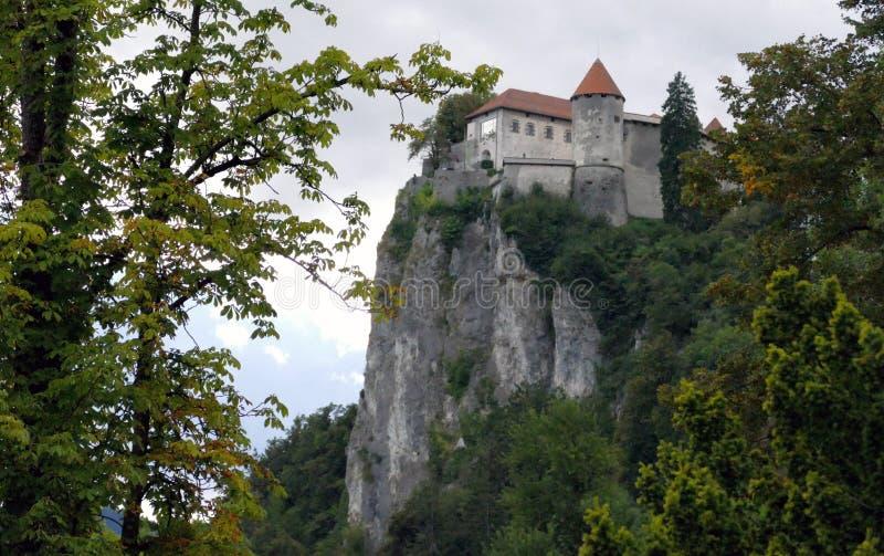 O castelo sangrado construído sobre um lago de negligência do penhasco sangrou, localizado no sangrado, Eslovênia fotos de stock royalty free