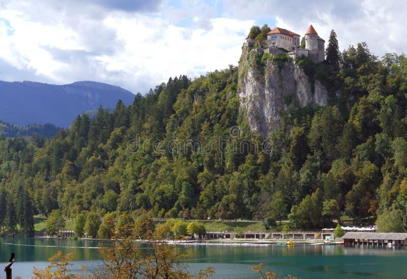 O castelo sangrado construído sobre um lago de negligência do penhasco sangrou, locat imagens de stock royalty free