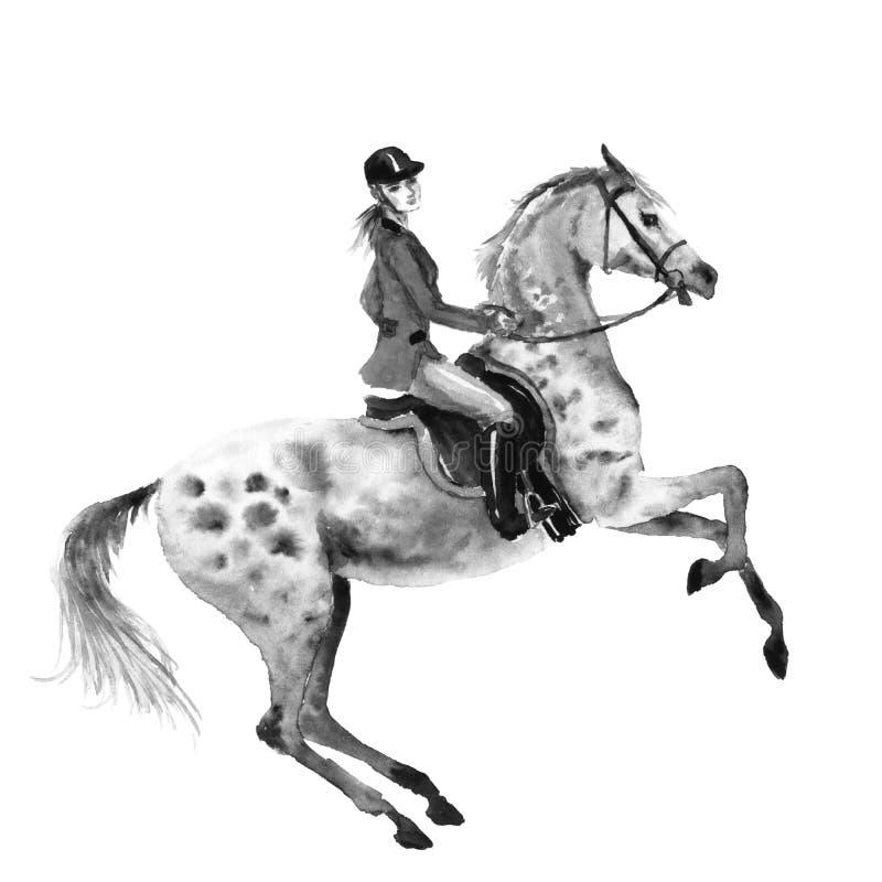 O cavaleiro de Horseback e a elevação dapple o cavalo cinzento Ilustração monocromática preto e branco do desenho da mão da aquar ilustração stock