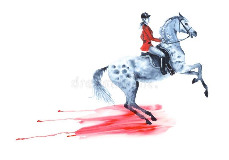 O cavaleiro de Horseback no revestimento vermelho e a elevação dapple o cavalo cinzento Da gota fluida da gota da mancha da mão d ilustração do vetor
