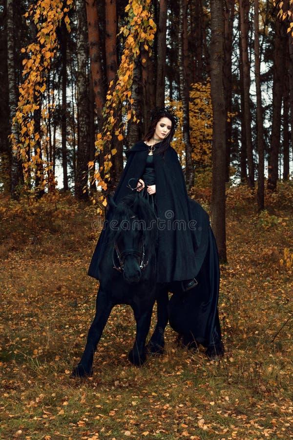 O cavalo do frisão fica em um joelho ao treinar com uma jovem mulher em uma equitação gótico do vestuário da noite preta horsebac imagem de stock
