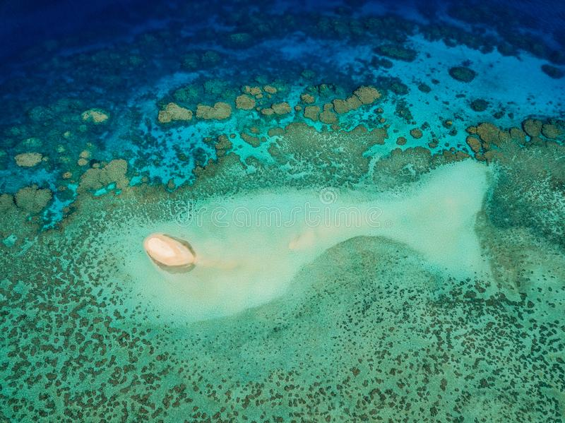 O cay arenoso grande no formulário de um peixe em Wheeler Reef foto de stock