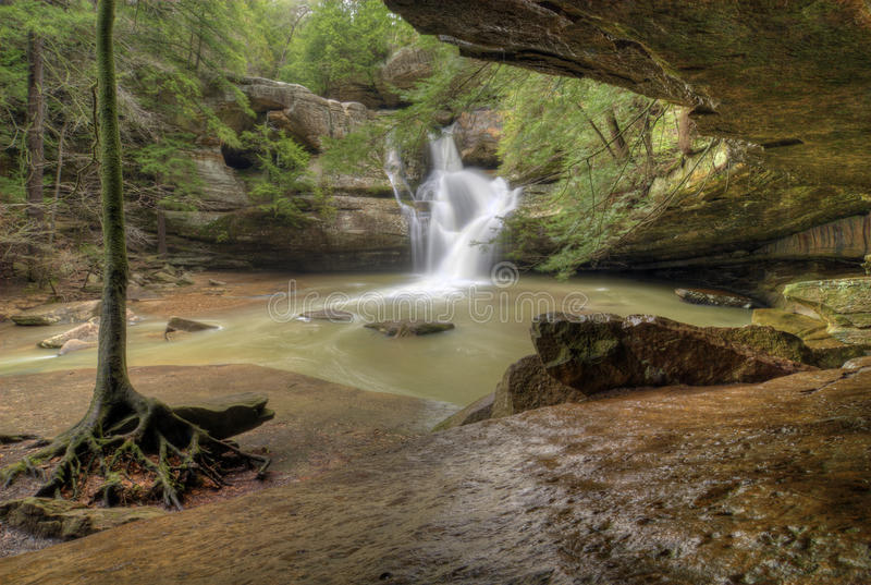 O cedro cai Ohio fotografia de stock royalty free