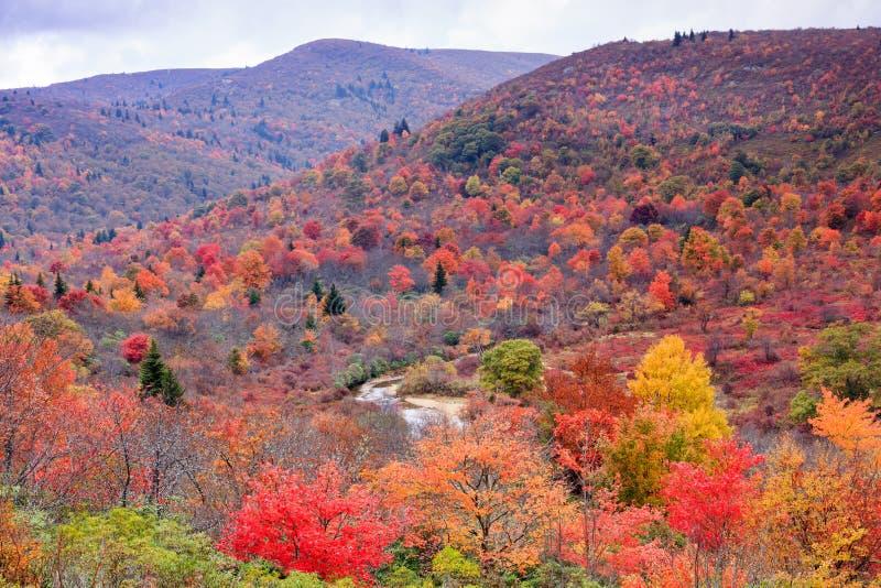 O cemitério coloca o nacional Forest North Carolina de Pisgah fotos de stock royalty free