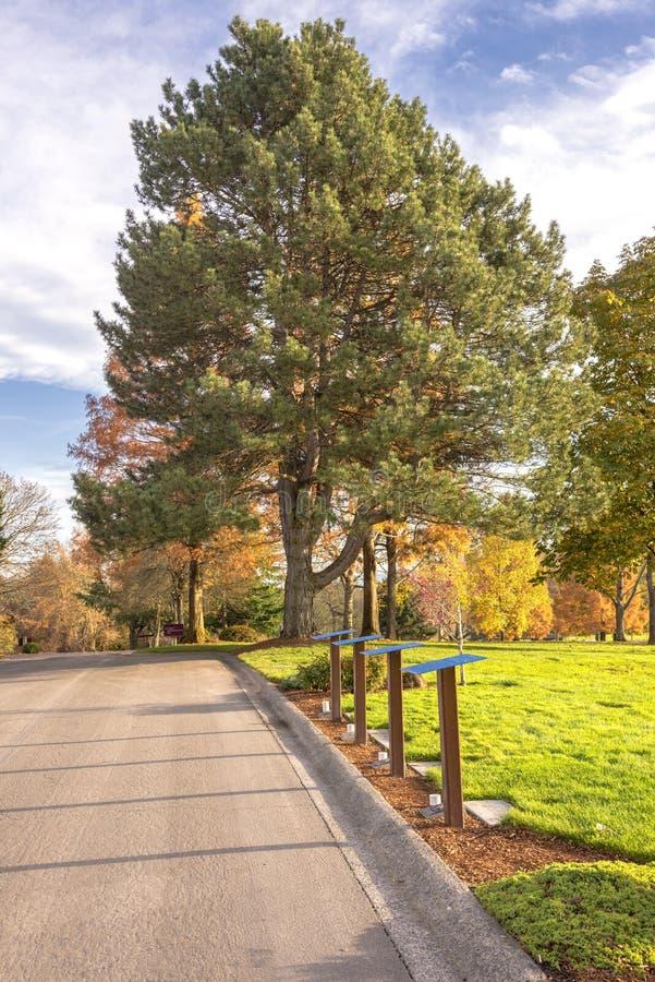 O cemitério nacional de Willamette aterra Oregon fotografia de stock royalty free