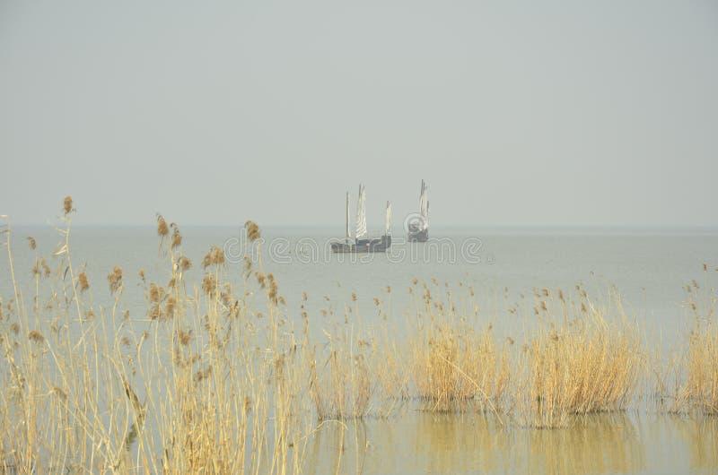 O cenário da mola do lago Taihu em Wuxi, China imagem de stock