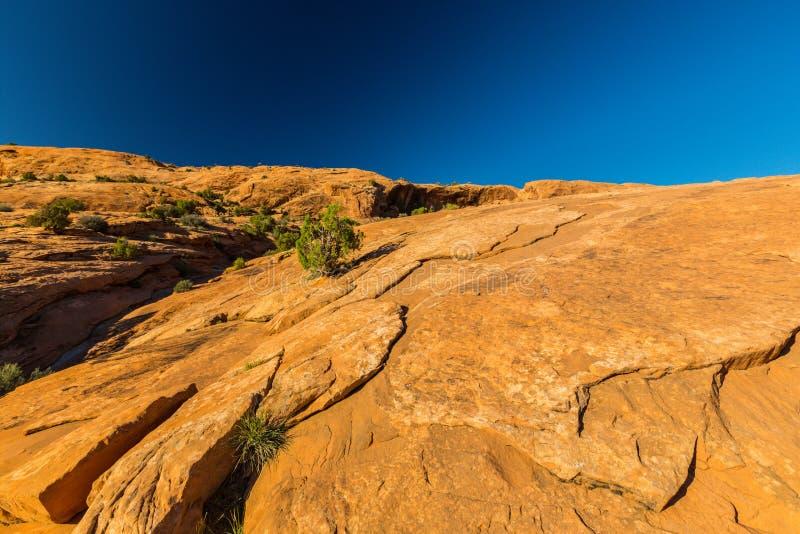 O cenário do outono com o céu azul profundo e as rochas vermelhas no Arizona abandonam imagens de stock royalty free