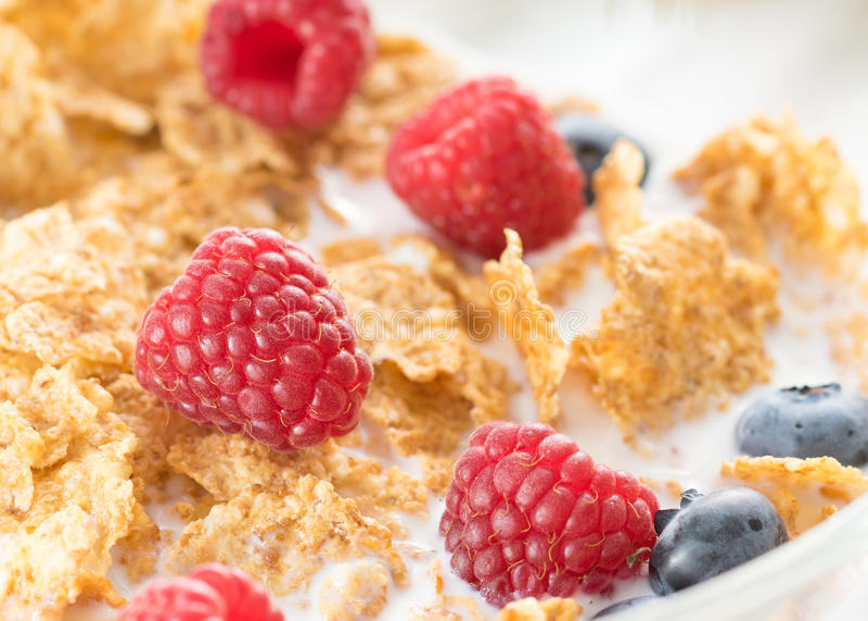 O cereal lasca-se com framboesa fresca imagem de stock
