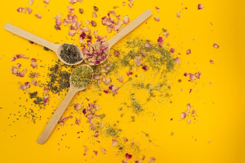 O chá aumentou, camomila e tomilho em uma colher de madeira em um fundo amarelo fotografia de stock