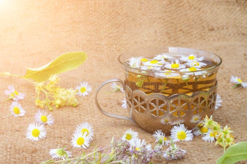 O chá de camomila em um copo de vidro com um quadro do ferro em uma serapilheira com Linden floresce imagens de stock