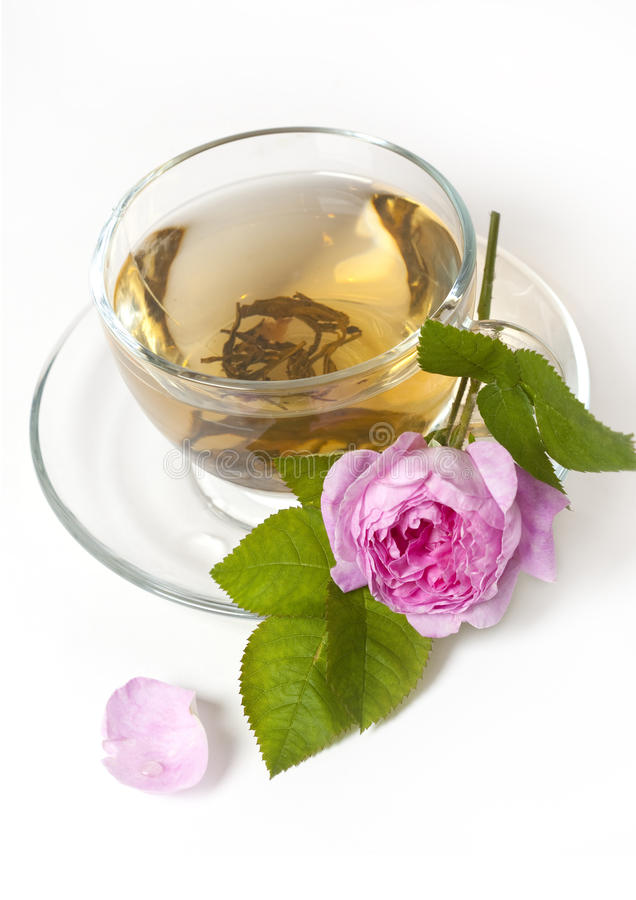 O chá levantou-se fotografia de stock