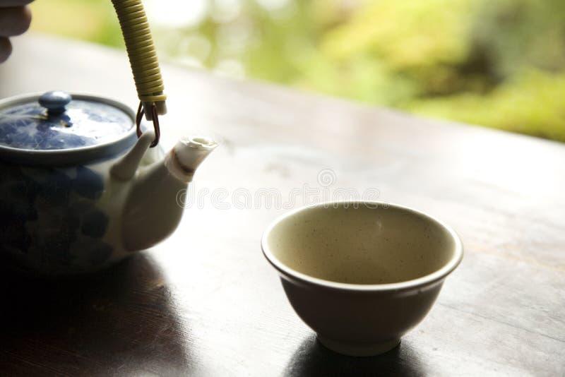 O chá verde no potenciômetro e apronta-se para derramar imagem de stock
