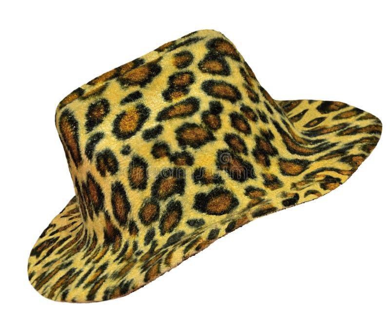 O chapéu de Ladie da cor do leopardo ilustração royalty free
